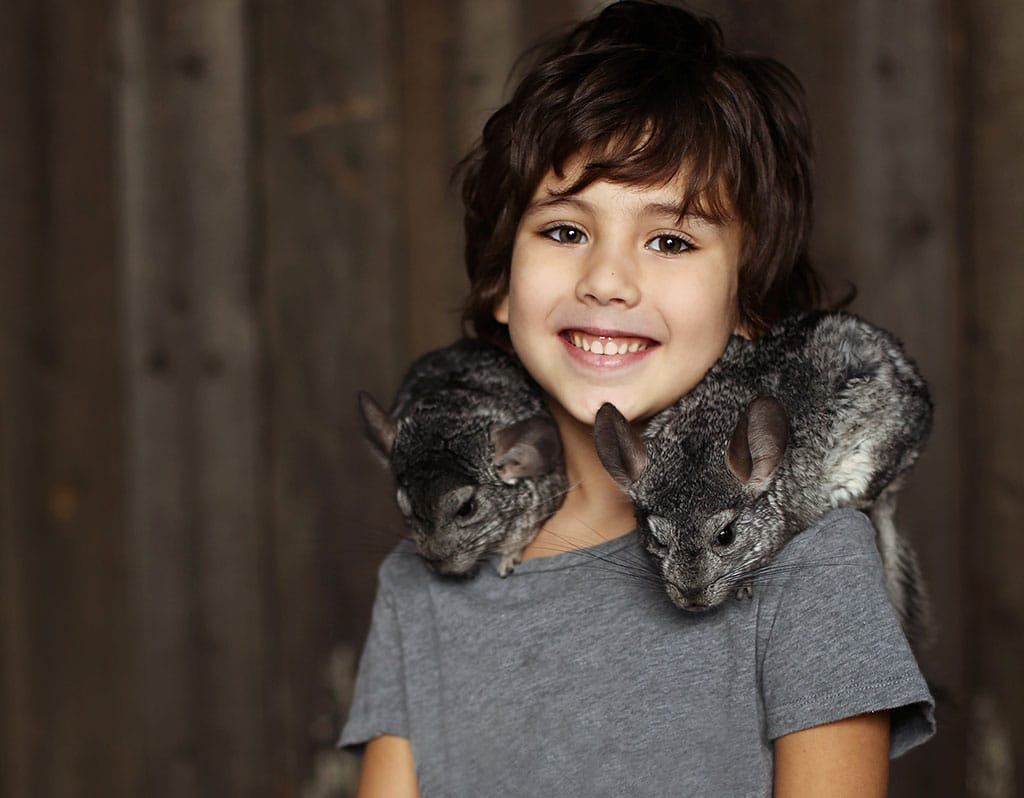 Cute little boy with two chinchillas