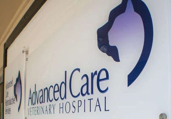 Advanced Care Veterinary Hospital Hallway